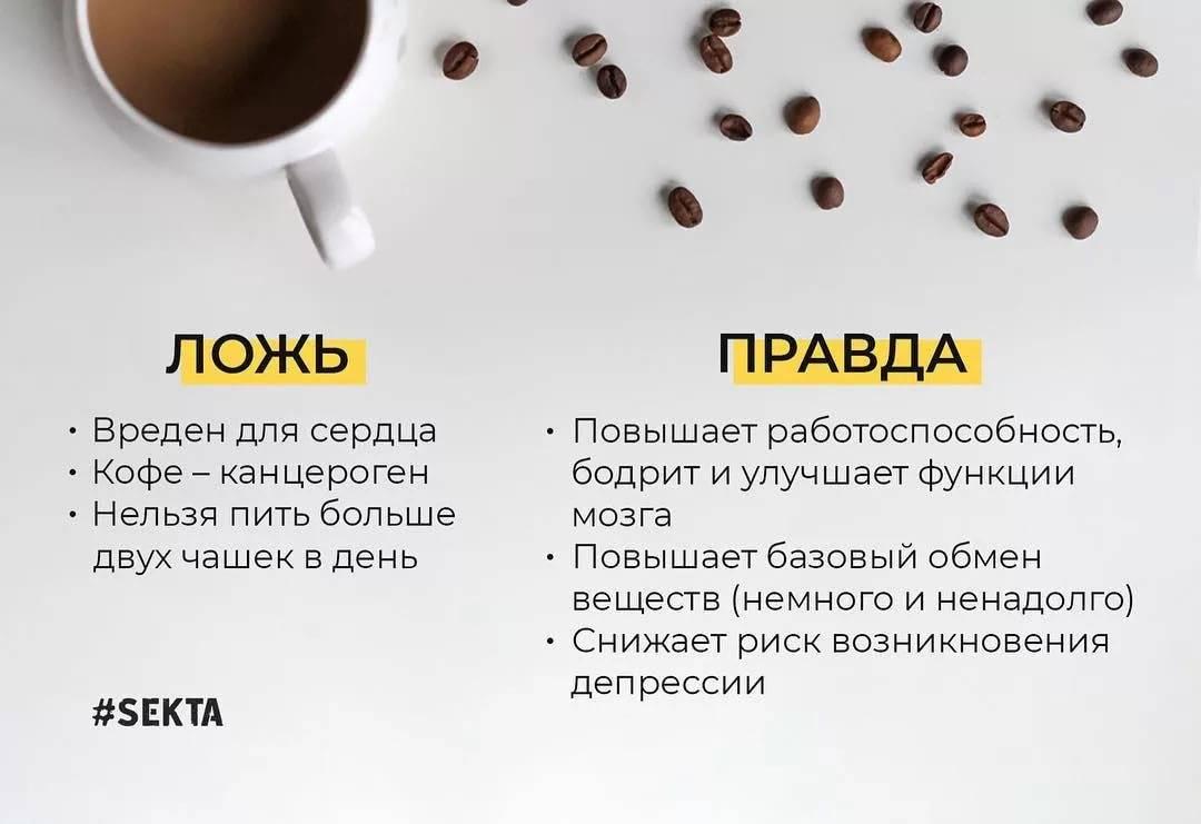 Польза и вред кофе для здоровья человека: натуральный или растворимый
