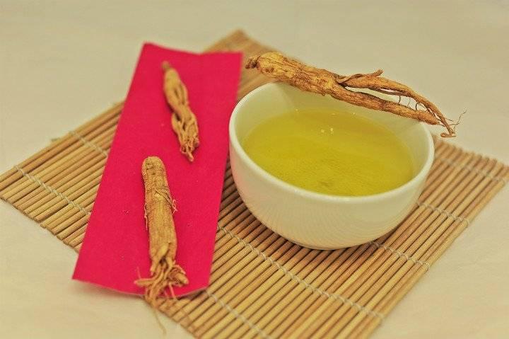 Женьшень чай: полезные свойства, противопоказания,рецепты и особенности приготовления отвара