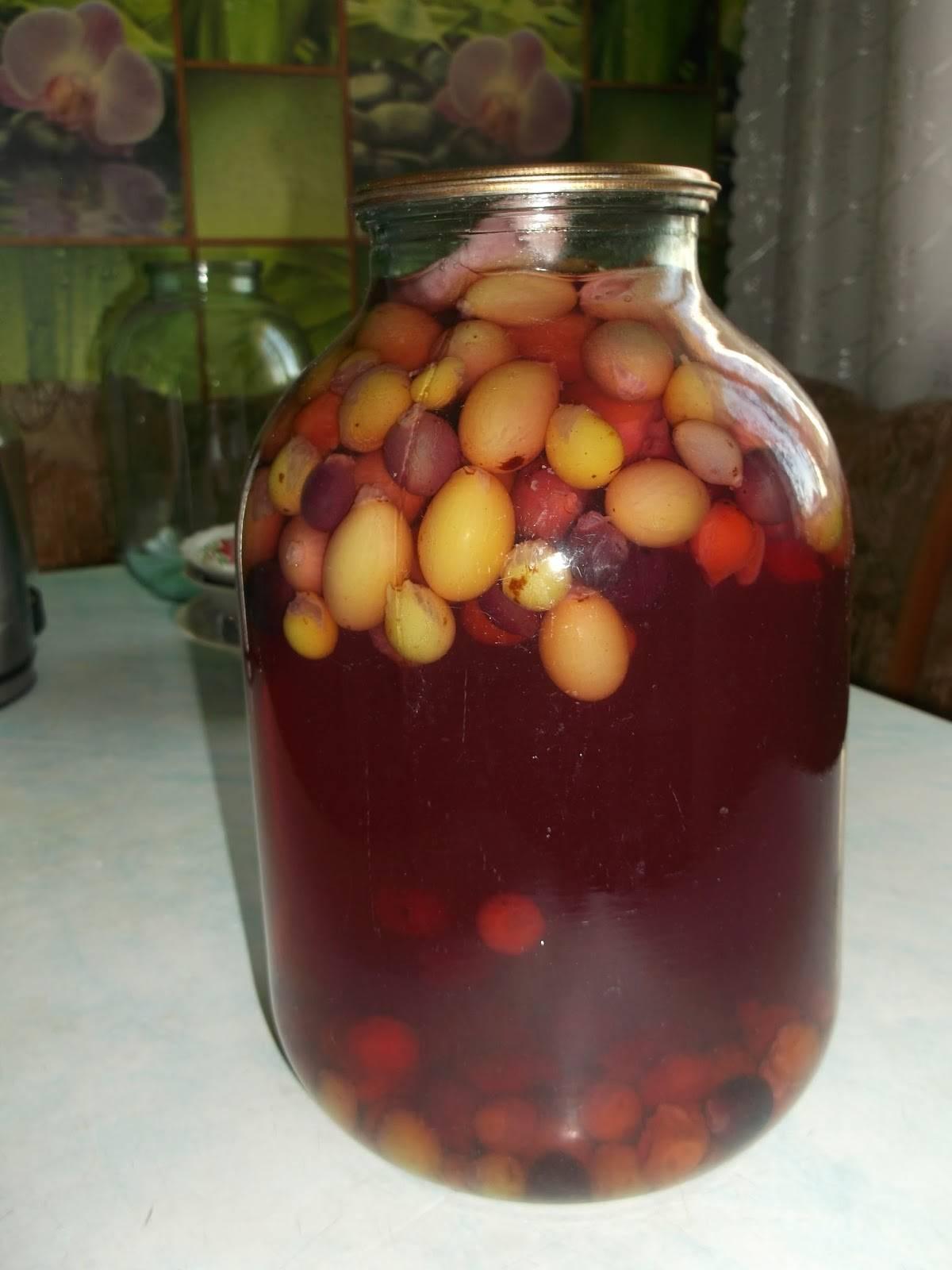 Компот из винограда на зиму: лучшие рецепты приготовления