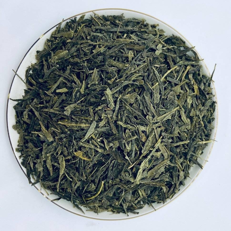 Сенча чай (зеленый, китайский, японский): описание, лечебные и полезные свойства