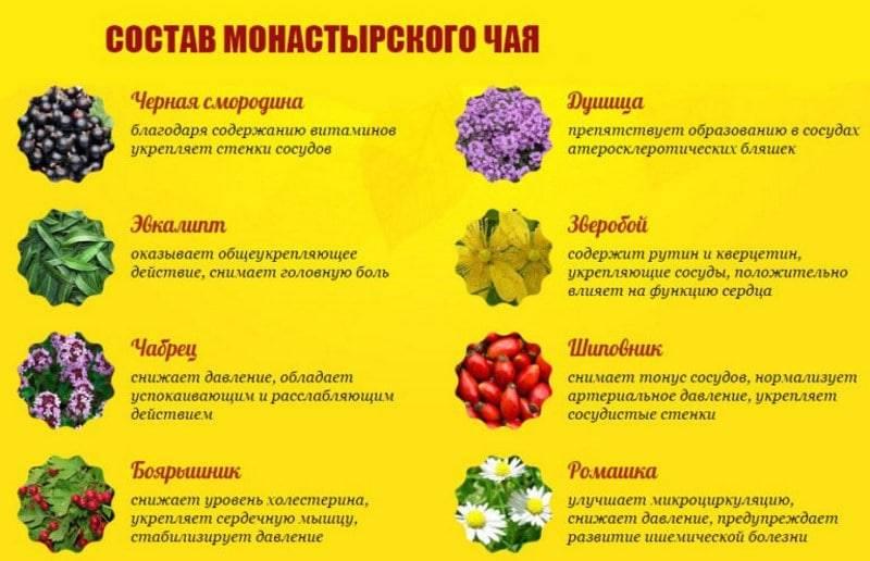 Чай для сердца и сосудов — 18 видов травяных напитков, полезных для сердечно-сосудистой системы