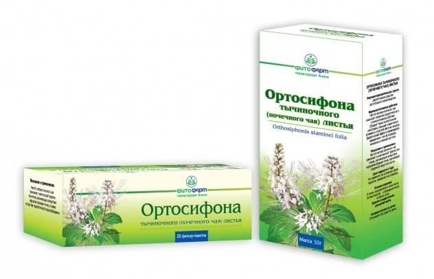Почечный чай, инструкция по применению,свойства и противопоказания