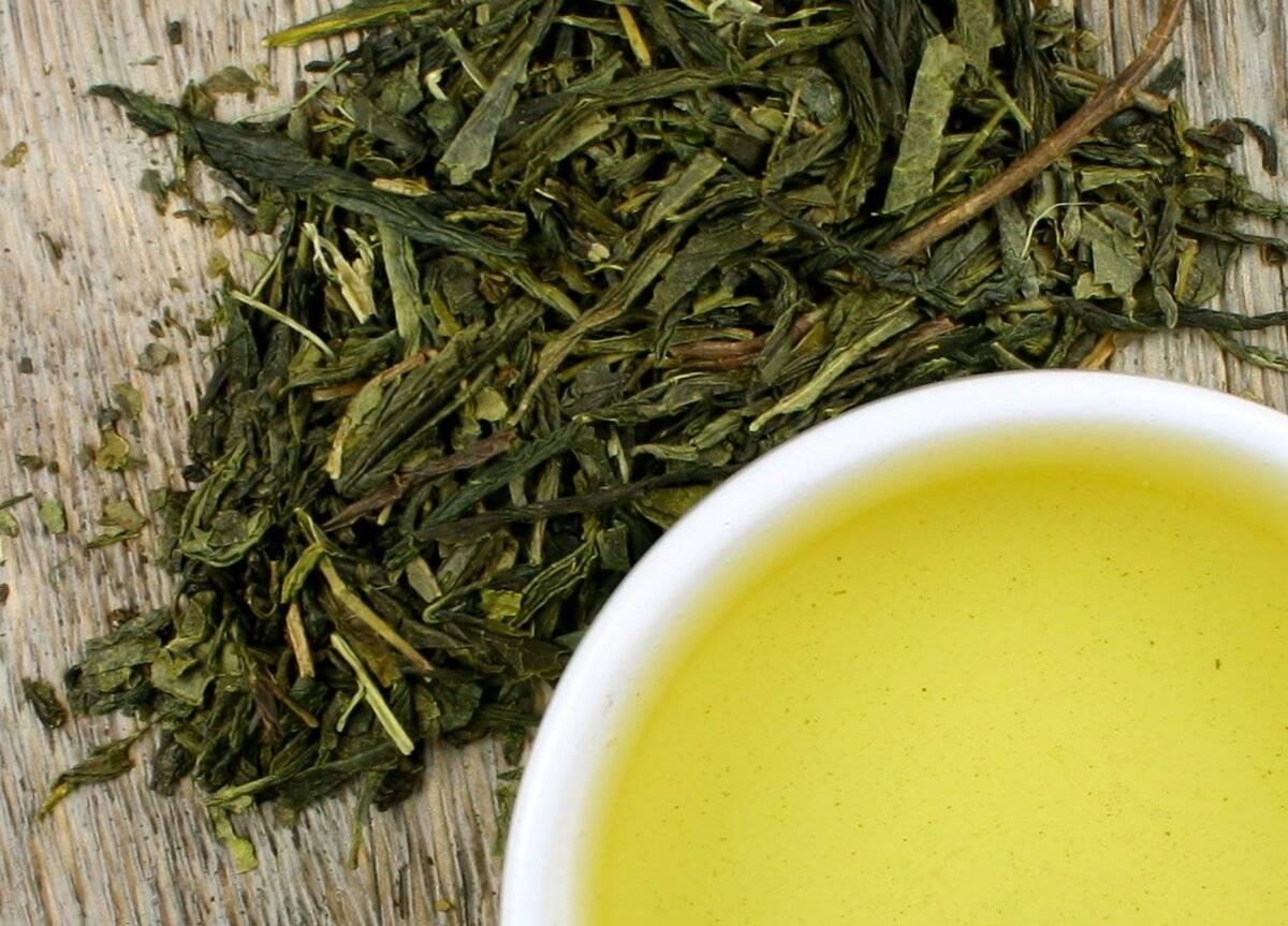 Зеленый чай – состав, полезные свойства и возможный вред