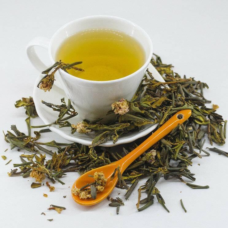 Чай из зверобоя польза и вред как заваривать и пить - здоровье и долголетие