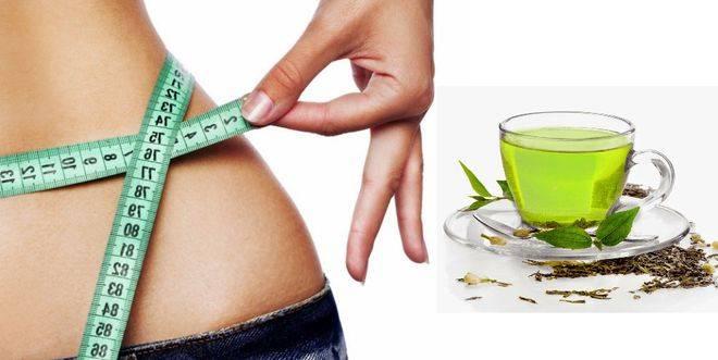 Диета на зеленом чае для быстрого и эффективного похудения на your-diet.ru. | здоровое питание, снижение веса, эффективные диеты