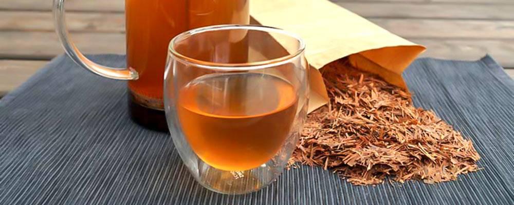 Чай лапачо: полезные свойства, противопоказания, как заваривать
