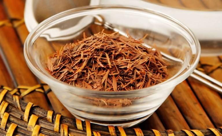 Чай кудин (горькая слеза):полезные свойства и вред. как правильно заваривать и пить