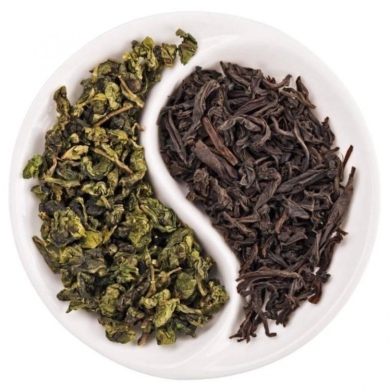 Зеленый чай для волос: ополаскивания
