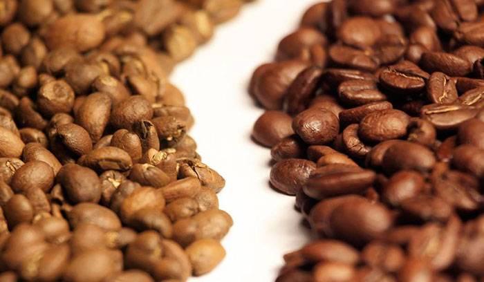 Арабика и робуста - различия   сорта кофе