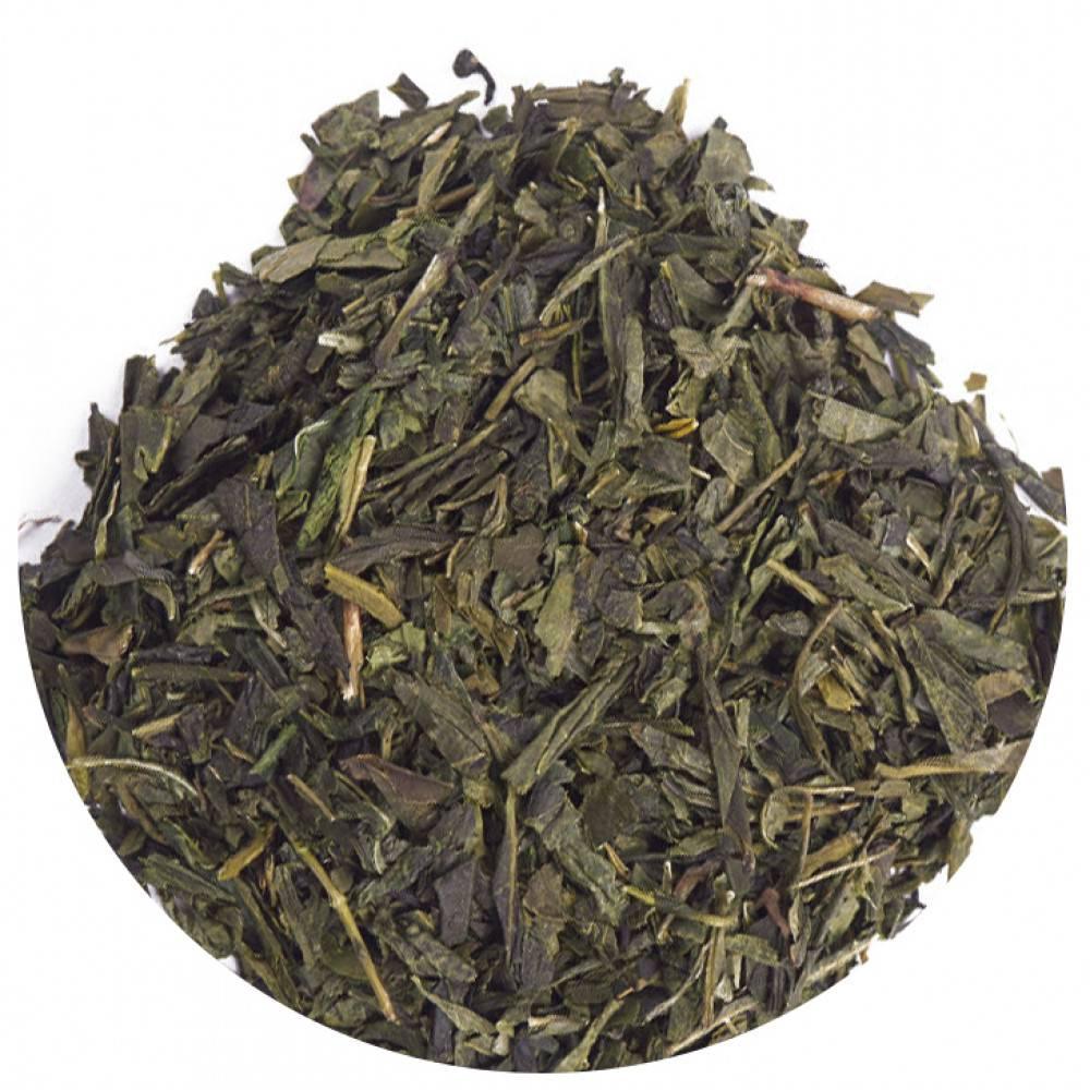 Японский зеленый чай сенча (сентя) — описание, польза и вред, лечебные свойства и противопоказания