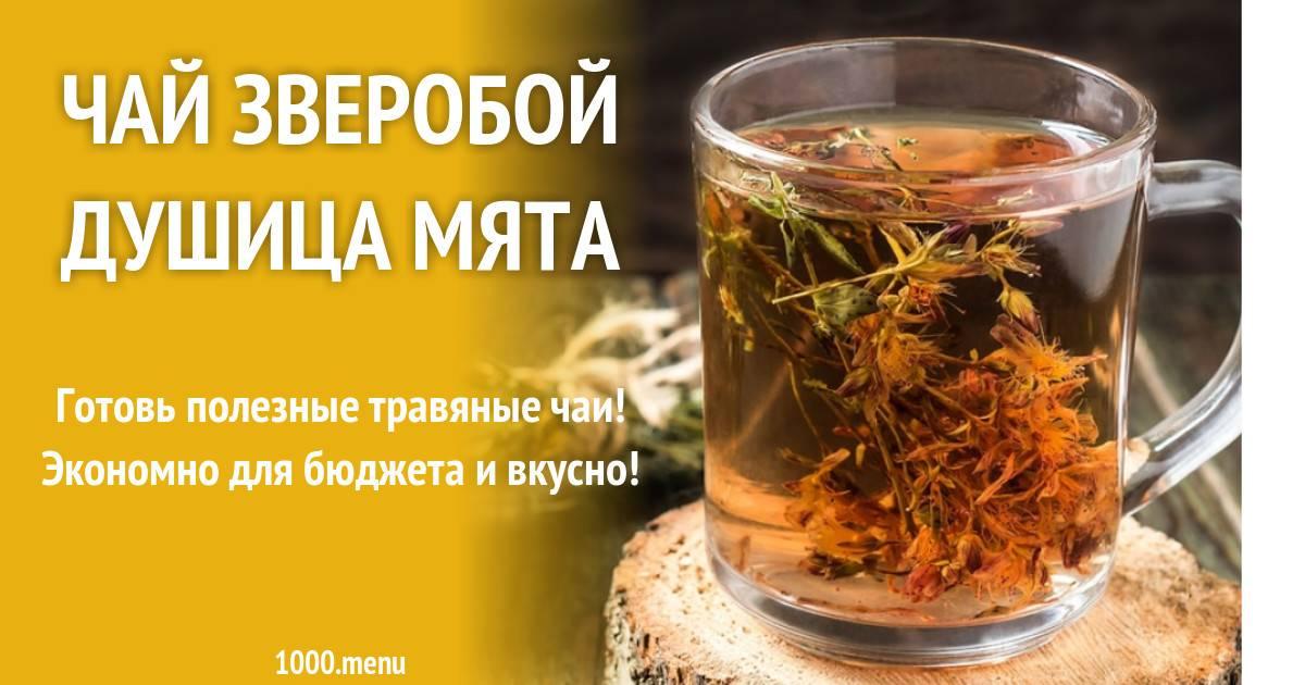 Чай из зверобоя, польза и вред для мужчин и женщин, способы заваривания