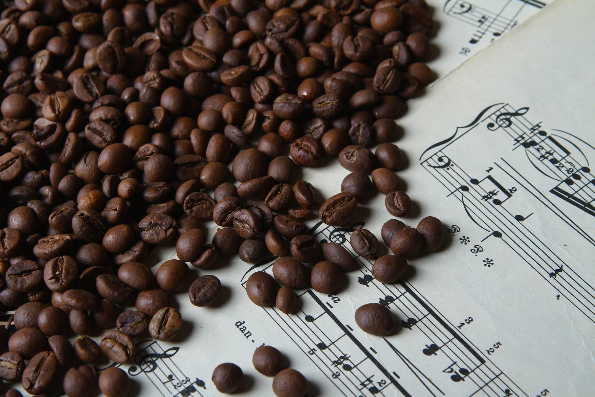 Индийский кофе: особенности, сорта и виды, местные рецепты