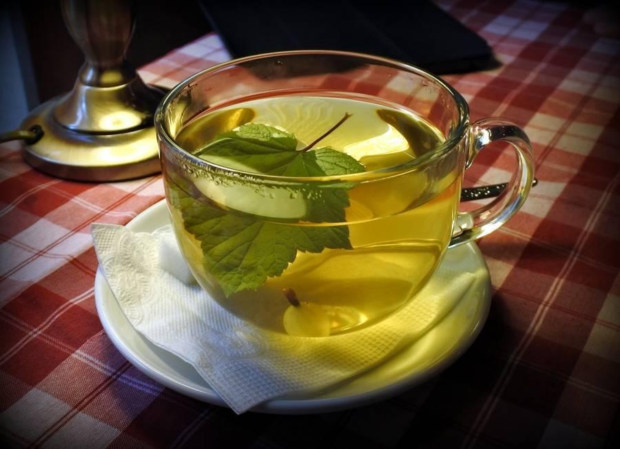 Чай из базилика: применение в медицине и противопоказания