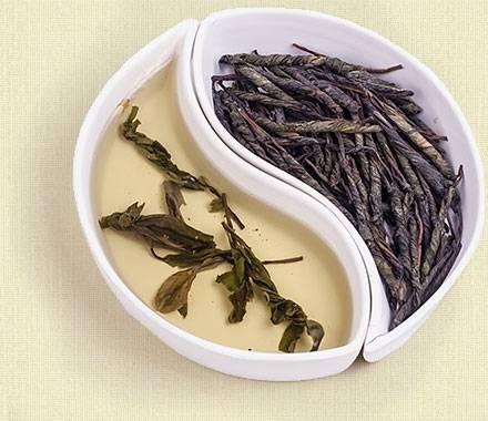 Чай кудин: полезные свойства и возможный вред | польза и вред