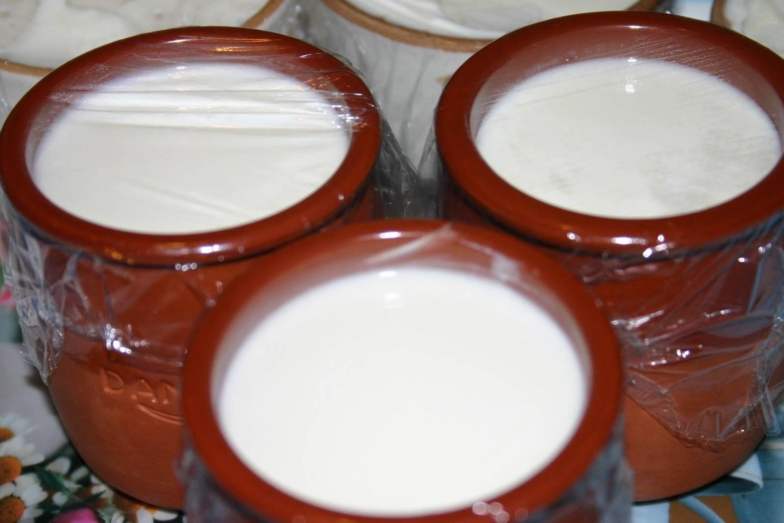 Йогурт без молока: топ-5 рецептов | блог comfy