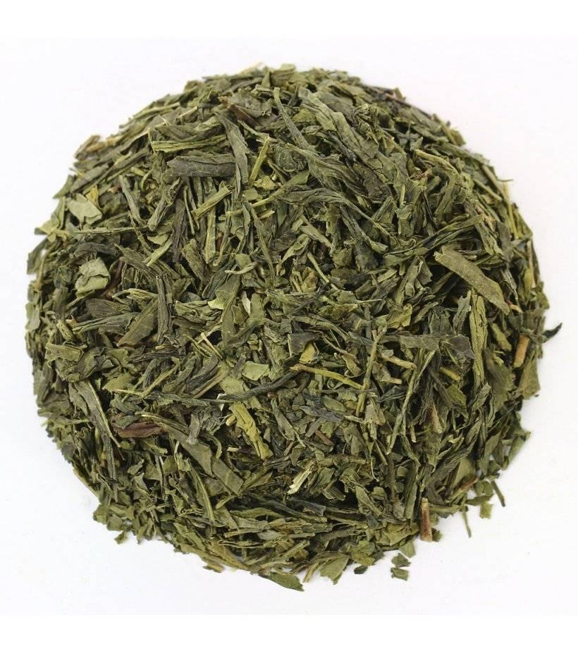Зеленый японский чай сенча (сентя): что это такое, польза