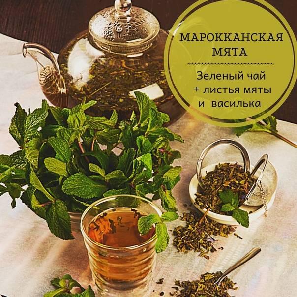Кухня марокко. рецепт марокканского чая