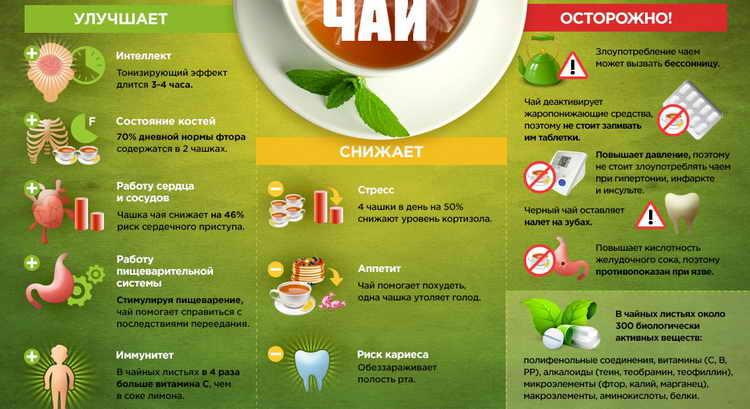Можно ли беременным женщинам пить зеленый чай. какие чаи и травяные настои полезны при беременности