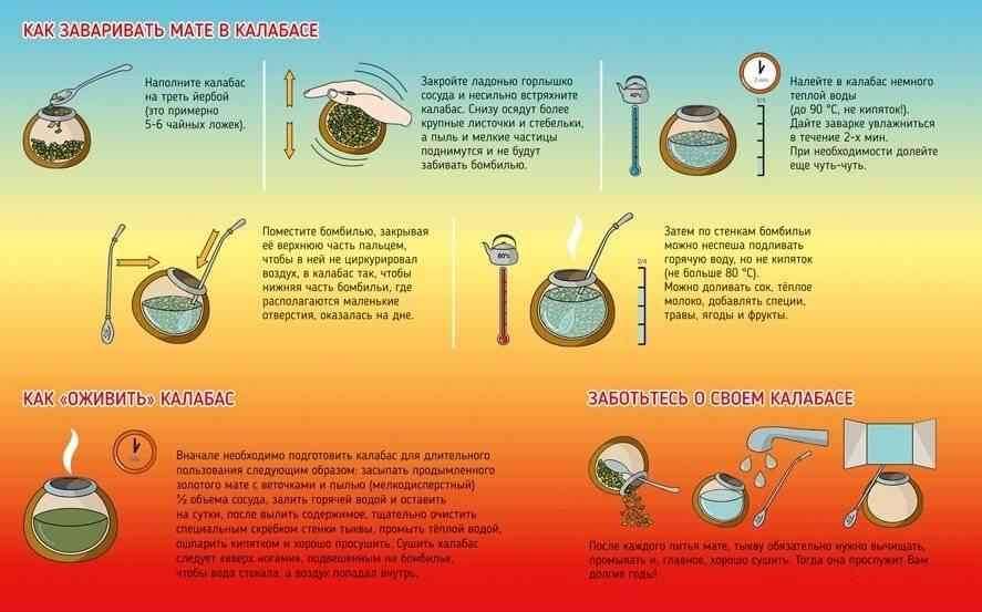 Чай мате: польза и вред. как правильно заваривать чай мате