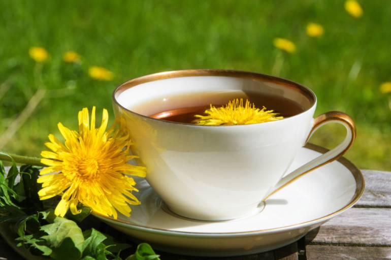 Чай из одуванчиков – польза и вред, рецепты, как пить