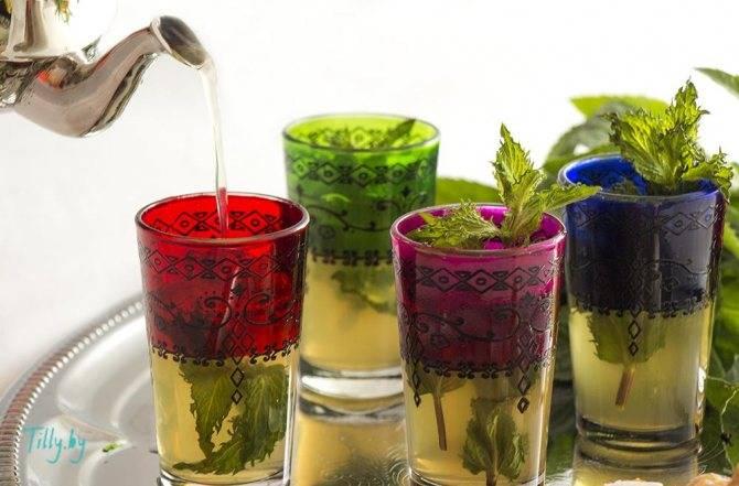 Марокканская мята: полезные свойства, применение, способы приготовления чая