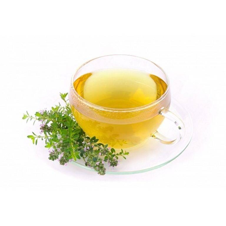 Польза и вред чая с чабрецом (тимьяном) плюс рецепты приготовления