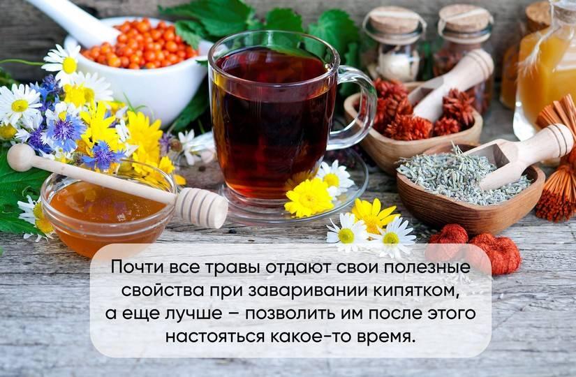 Какой чай можно пить, чтобы избавиться от простуды?