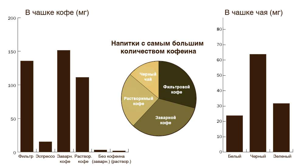 В каком чае больше кофеина, черном или зеленом: от чего зависит его содержание и как можно снизить кофеин