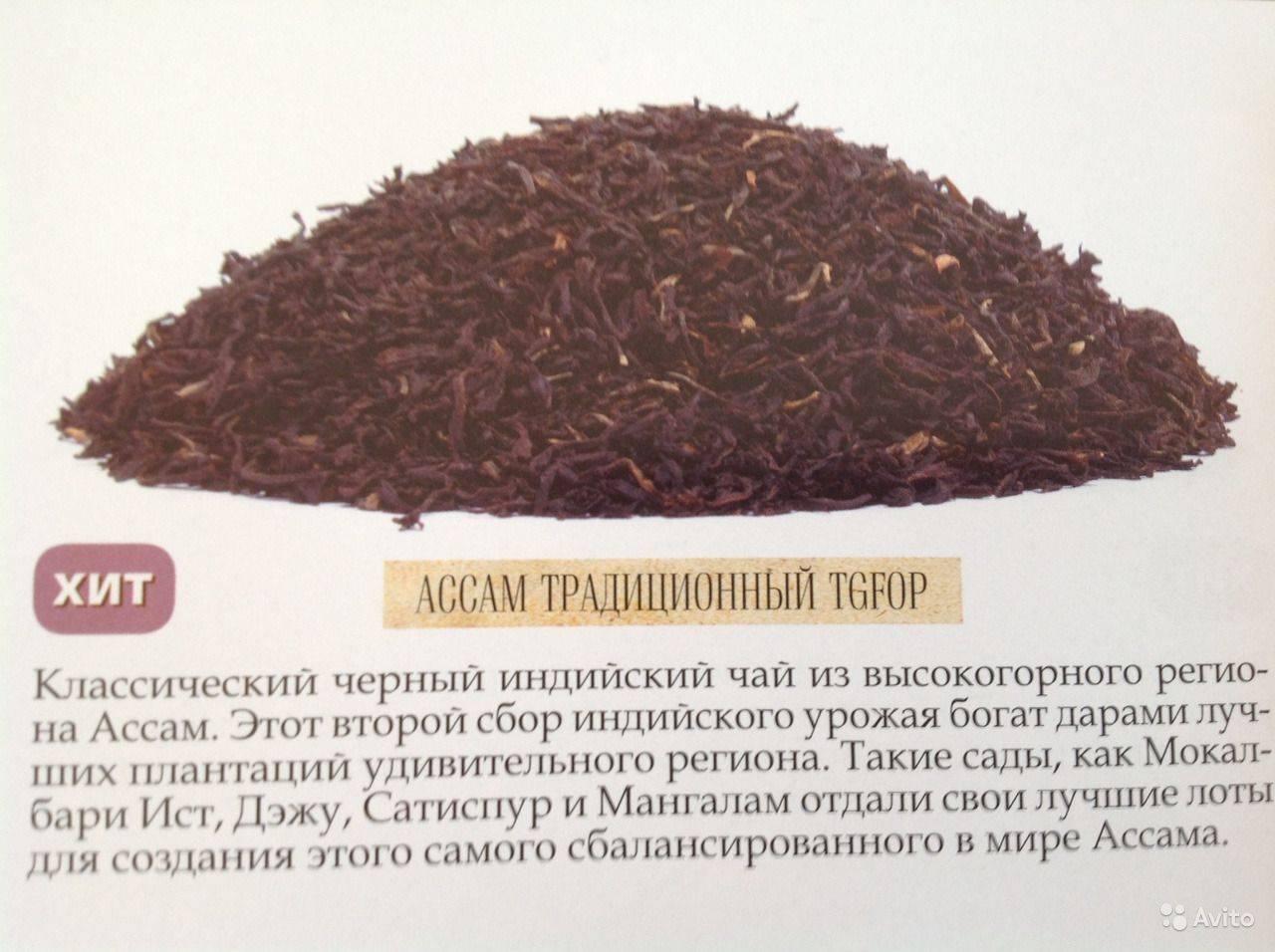 Чай ассам: описания и свойства полезного напитка