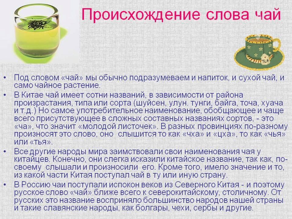 Кофе в россии – история и современность