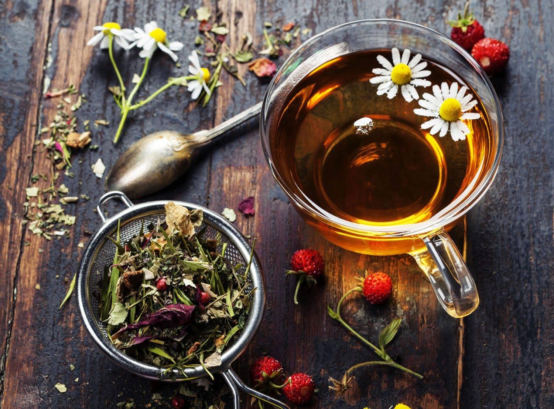 Чай из душицы – рецепты заваривания и польза