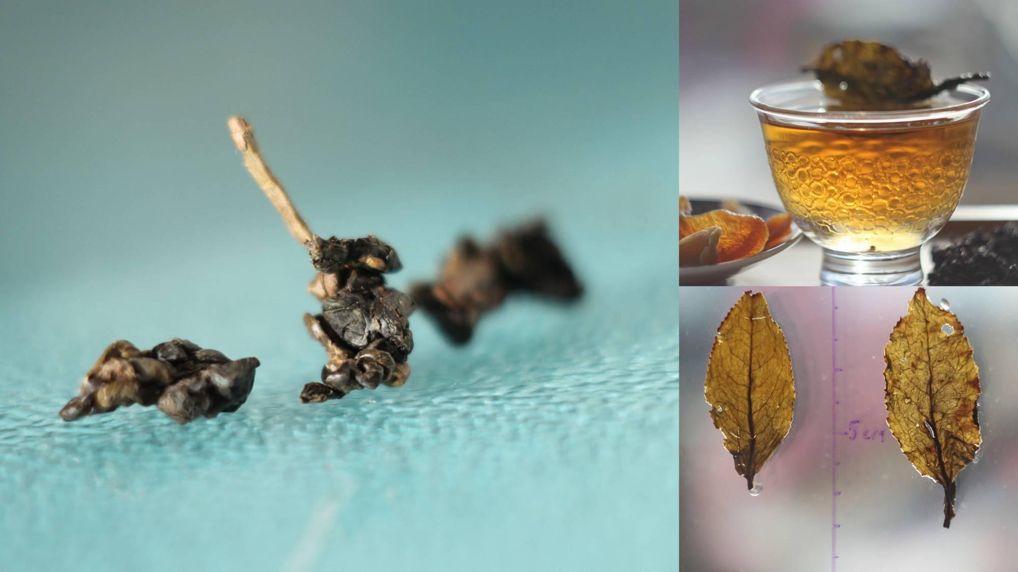 Чай из листьев вишни. польза и вред как правильно заваривать