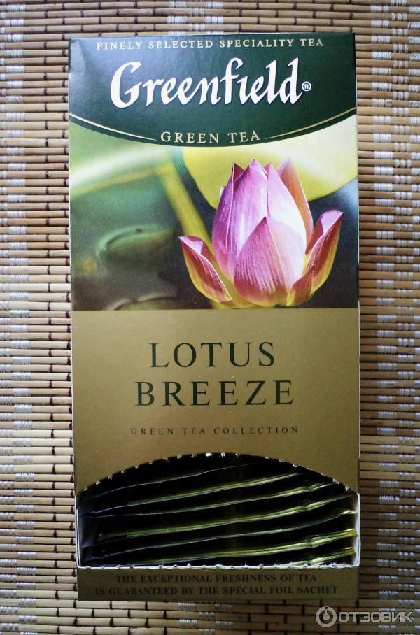 Противопоказания чая из лотоса