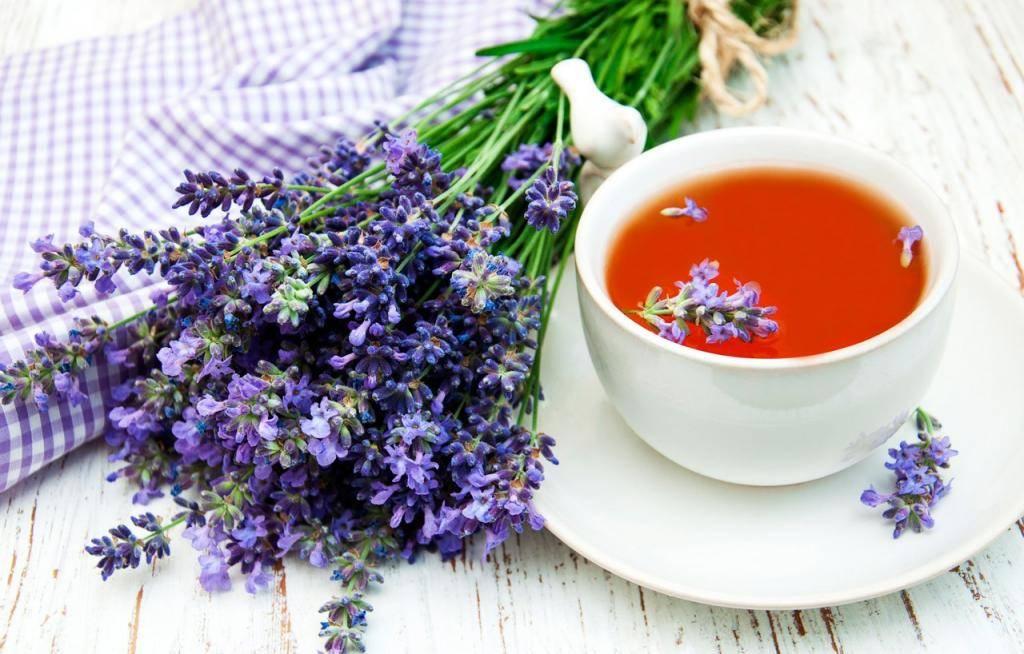 Полезен ли чай с душицей?