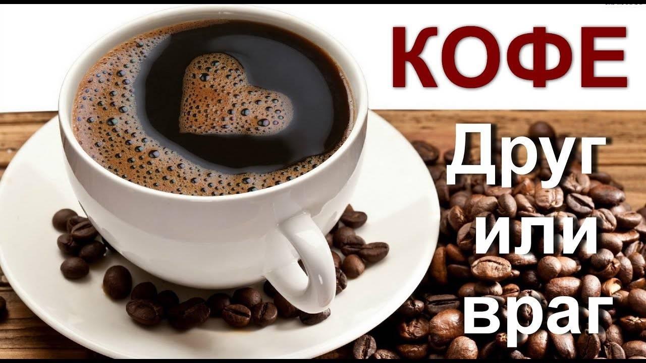 Сколько чашек кофе пить в день   почему кофе не вредит здоровью   польза от кофе