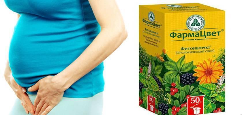 Почечный чай при беременности от отеков - отзывы