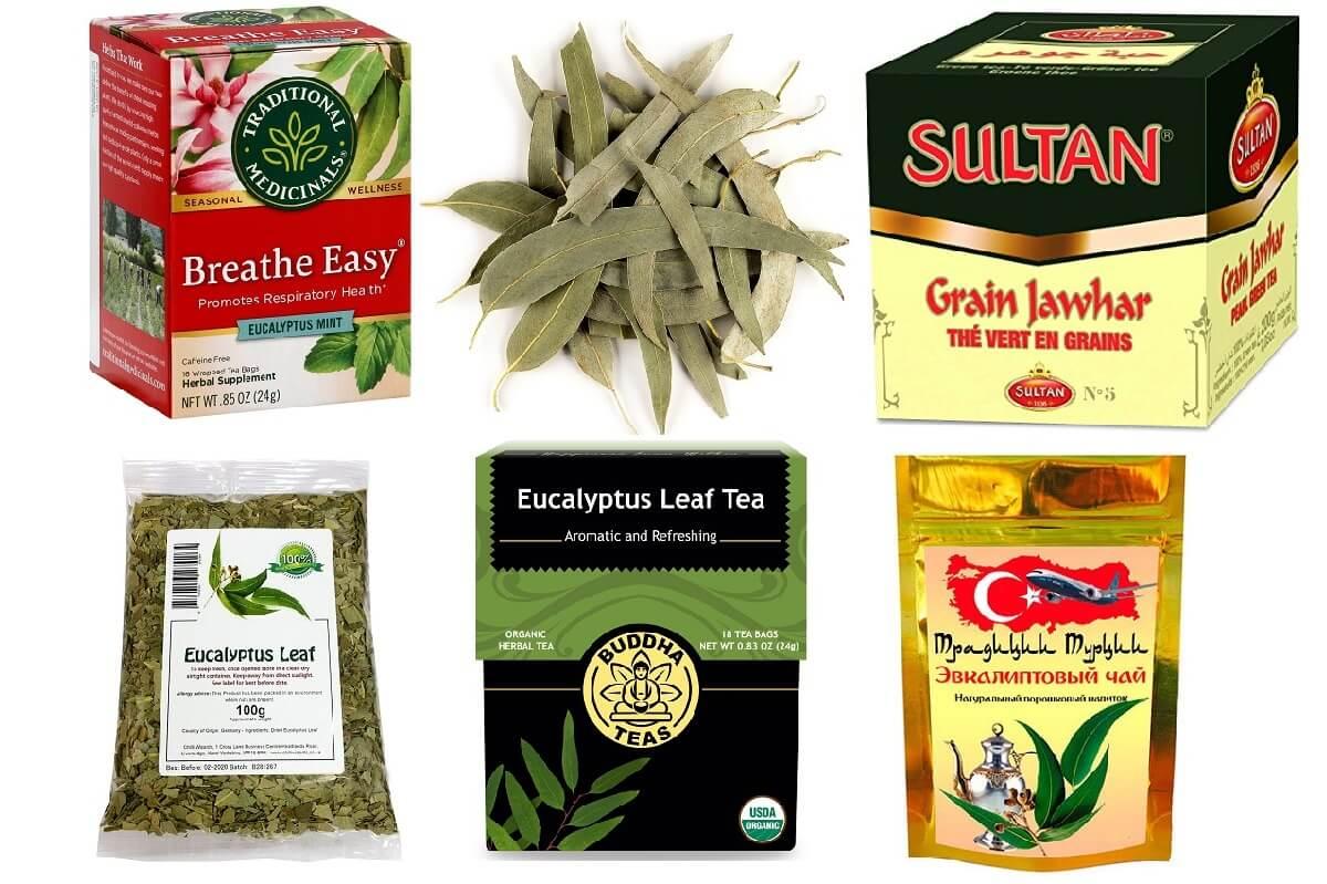 Как правильно заварить листья эвкалипта от кашля