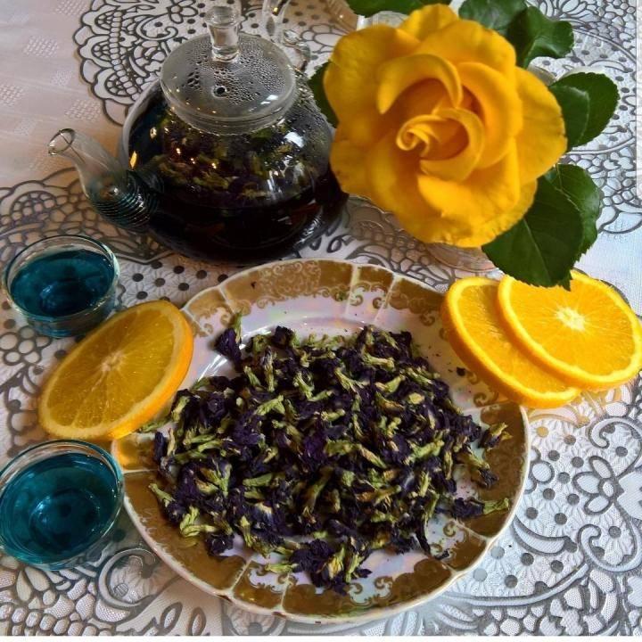 Синий чай из тайланда, его свойства, рекомендации по завариванию