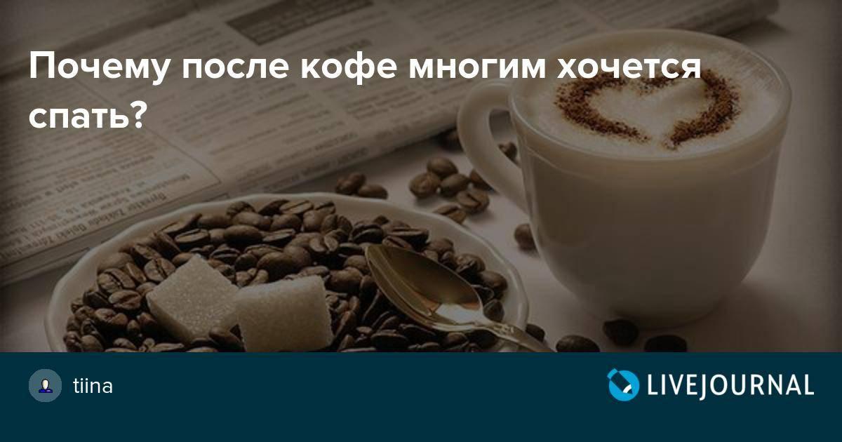 Почему от кофе хочется спать - причины сонливости после кофе