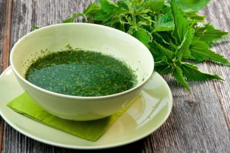 Чай из крапивы: свойства напитка и тонкости его заваривания