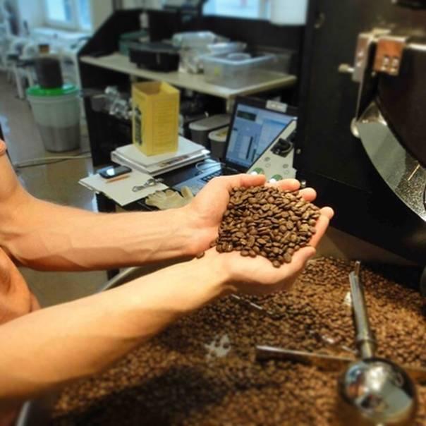 Характеристика кофе папуа – новой гвинеи