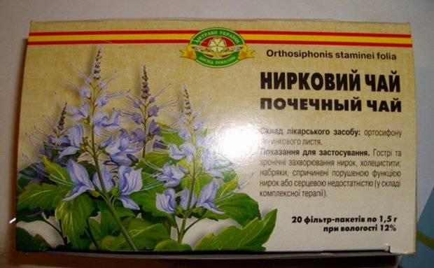 Какие болезни лечит почечный чай ортосифон: о растении, польза и вред от напитка, для похудения, при беременности и лактации, как правильно готовить