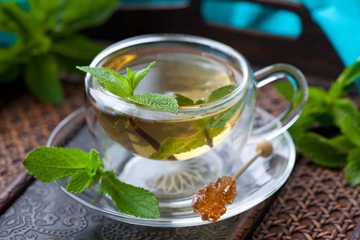 Можно ли пить мятный чай при беременности?