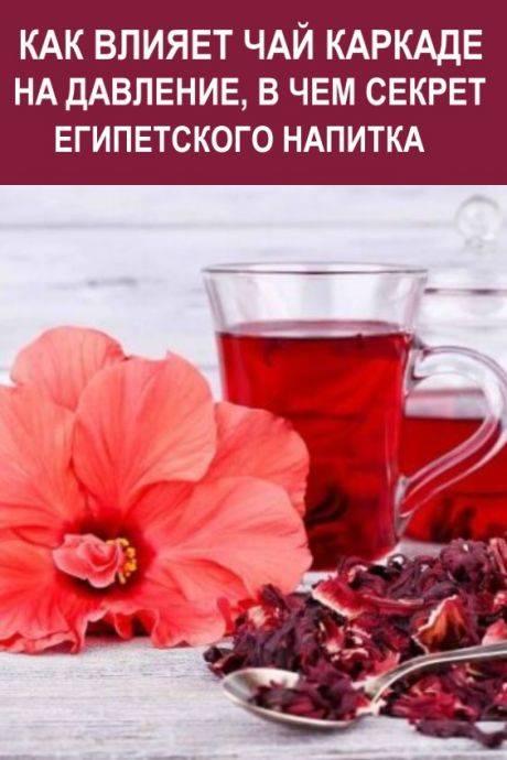 Чай каркаде повышает или понижает давление? как правильно пить?