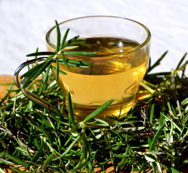 Чай с розмарином: польза и вред для здоровья | пища это лекарство