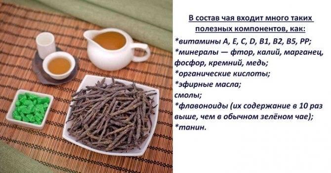 Состав, польза и вред зелёного чая для организма человека, противопоказания и норма потребления в сутки
