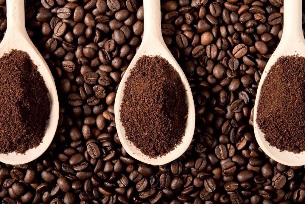 Польза и вред кофе: растворимый, в зернах или зеленый