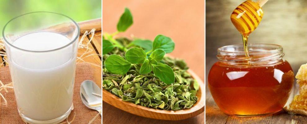 Лекарь с огорода, или листья капусты в народной медицине