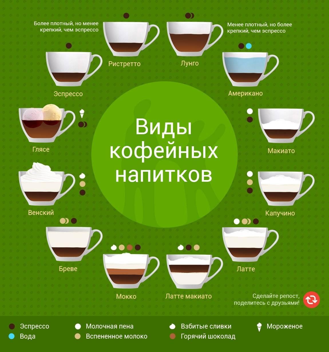 Виды кофе: названия и описание, способы приготовления