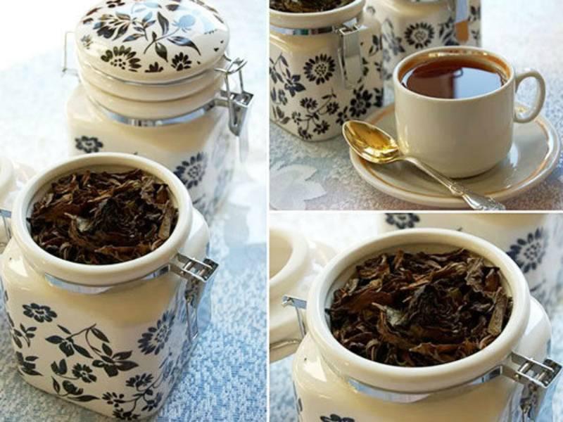 Как заготовить мяту для чая